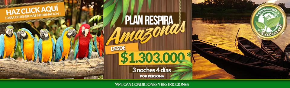 Planes turísticos en Amazonas